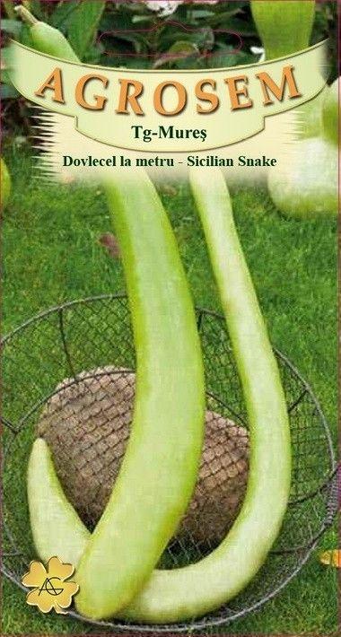 Seminte de Dovlecel la metru Sicilian Snake - AS - Lagenaria longissima