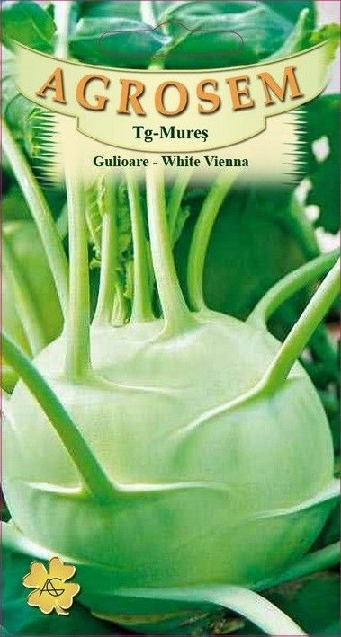 Seminte de Gulioare Vienna White - AS - Brassica oleracea var. gongylodes