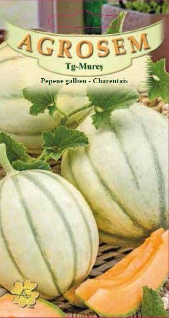 Seminte de Pepene galben Charentais - AS - Cucumis melo