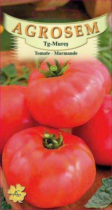 Seminte de Tomate mari Marmande - AS - Lycopersicon esculentum