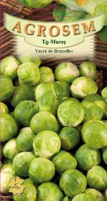 Seminte de Varza de Bruxelles Long Island - AS - Brassica oleracea var. gemmifera