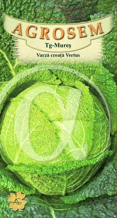 Seminte de Varza creata Vertus - AS - Brassica oleracea var. sabauda