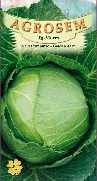 Seminte de Varza timpurie Golden Acre - AS - Brassica oleracea var. capitata