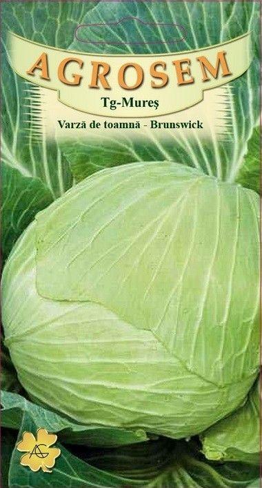 Seminte de Varza de toamna Brunswick - AS - Brassica oleracea var. capitata