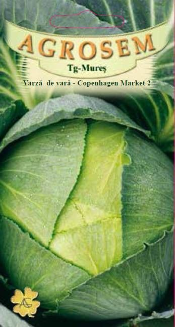 Seminte de Varza de vara Copenhagen Market 2 - AS - Brassica oleracea var. capitata