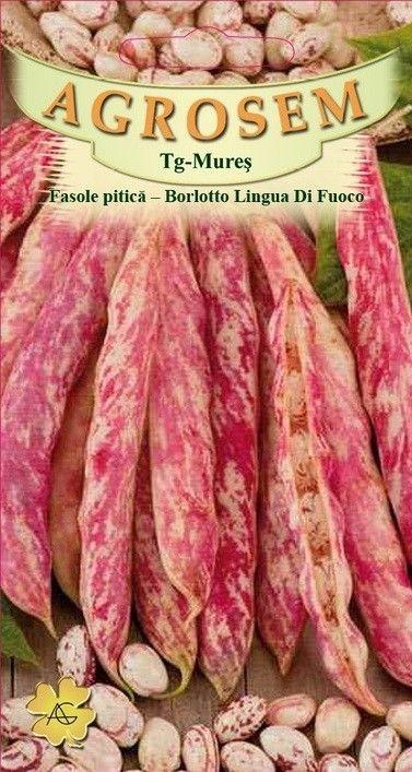 Seminte de Fasole boabe  Borlotto Lingua di Fuoco - 100g - AS - Phaseolus vulgaris var. nanus