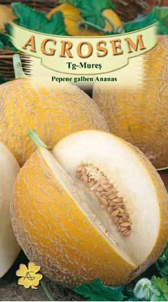 Seminte de Pepene galben Ananas - Big Pack - AS - Cucumis melo