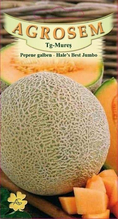 Seminte de Pepene galben Hale's Best Jumbo - Big Pack - AS - Cucumis melo
