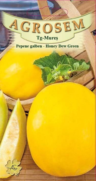 Seminte de Pepene galben Honey Dew Green - Big Pack - AS - Cucumis melo