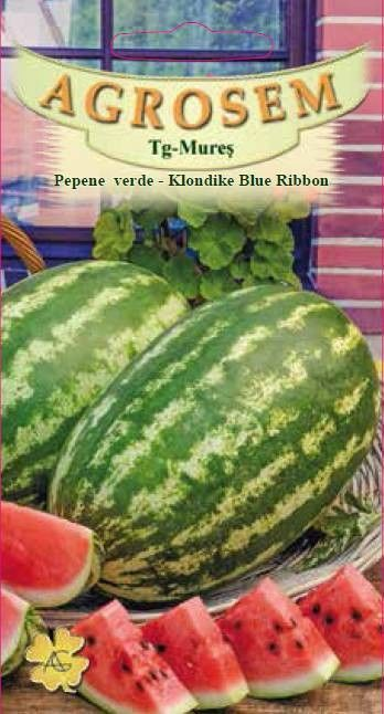 Seminte de Pepene verde Klondike Blue Ribbon - Big Pack - AS - Citrullus lanatus