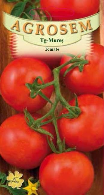 Seminte de Tomate soi sera-solar Saint Pierre - Big Pack - AS - Lycopersicon esculentum