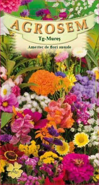 Seminte de Amestec flori anuale - AS