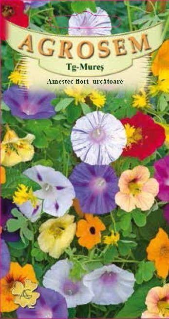 Seminte de Amestec flori urcatoare - AS