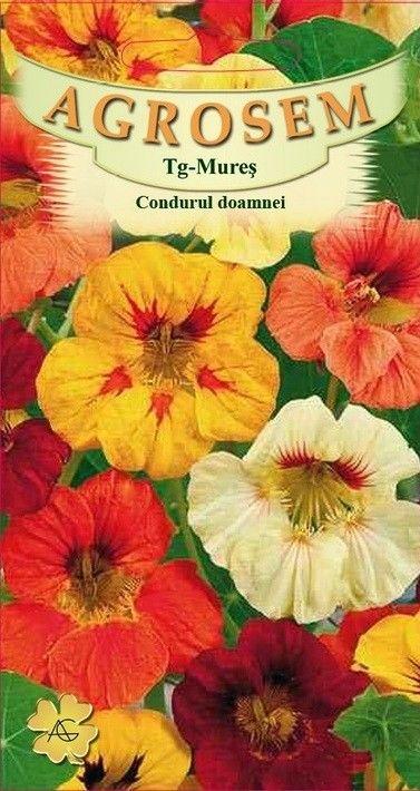 Seminte de Condurul doamnei mix - AS - Tropaeolum majus