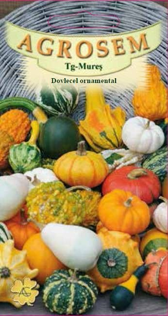 Seminte de Dovlecel ornamental mix - AS - Cucurbita pepo
