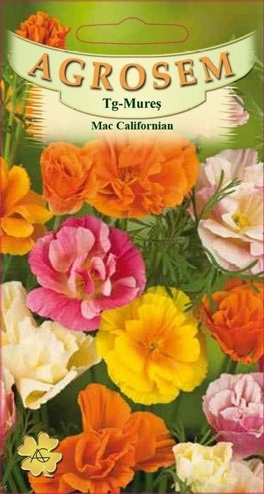 Seminte de Mac californian - AS - Escholzia californica