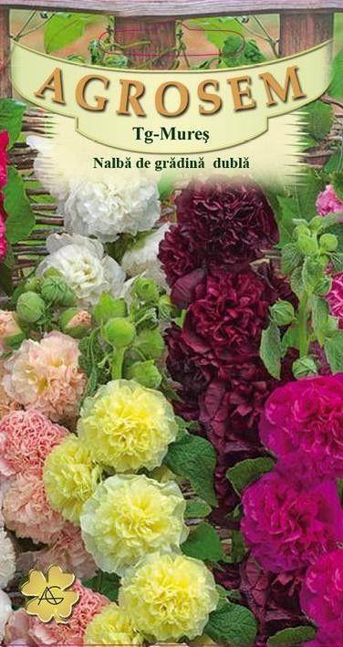 Seminte de Nalba de gradina dubla mix - AS - Alcea rosea