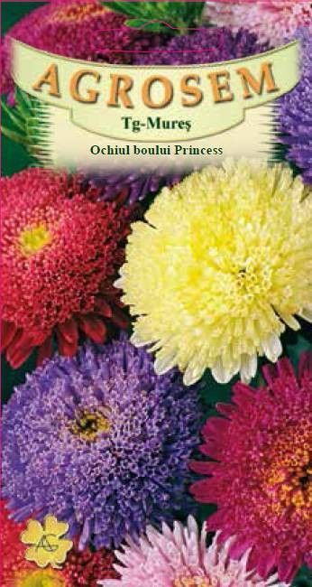 Seminte de Ochiul boului Princess mix - AS - Callistephus chinensis