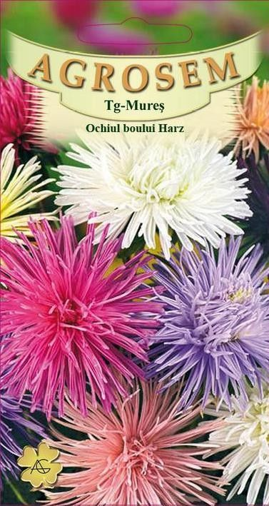 Seminte de Ochiul boului Harz mix - AS - Callistephus chinensis