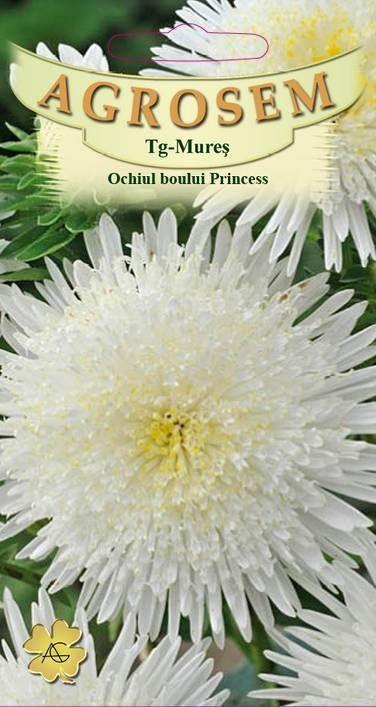 Seminte de Ochiul boului alb Princess Corinna - AS - Callistephus chinensis
