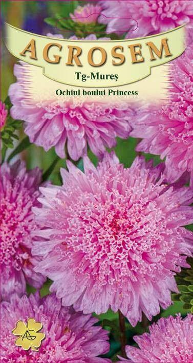 Seminte de Ochiul boului roz Princess Rita - AS - Callistephus chinensis