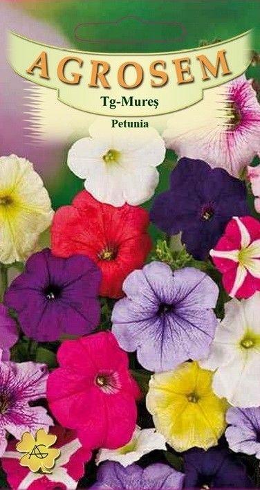Seminte de Petunia mix  - AS - Petunia hybrida