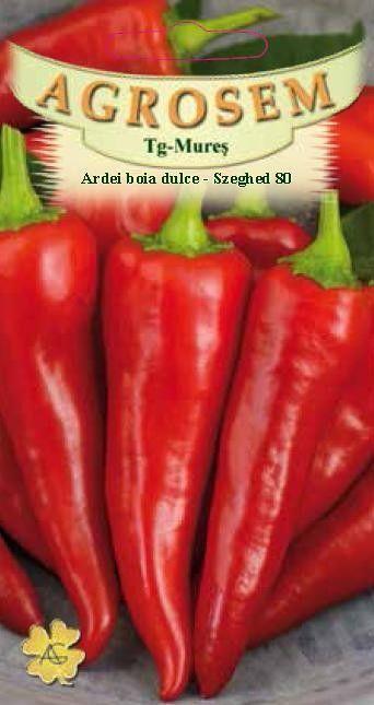 Seminte de Ardei boia dulce Szeghed 80 - AS - Capsicum annuum