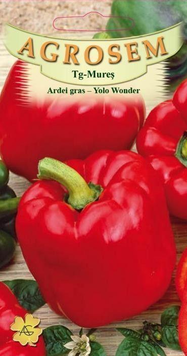 Seminte de Ardei gras Yolo Wonder - AS - Capsicum annuum