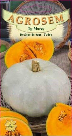 Seminte de Dovleac de copt Tudor - AS - Cucurbita maxima