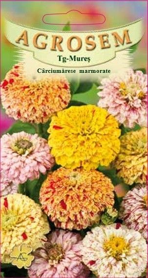 Seminte de Carciumarese marmorate mix - AS - Zinnia elegans