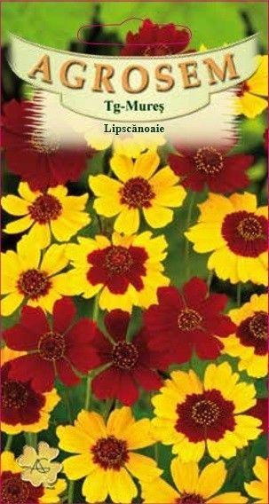 Seminte de Lipscanoaie mix - AS - Coreopsis tinctoria