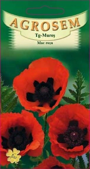 Seminte de Mac Red - AS - Papaver orientale