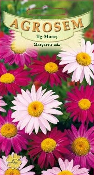 Seminte de Margarete mix - AS - Chrysanthemum coccineum
