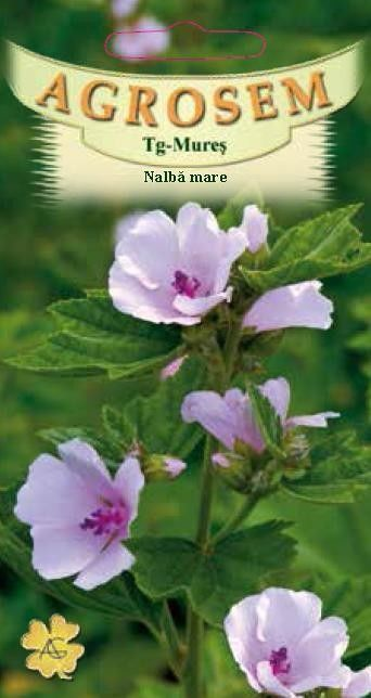 Seminte de Nalba mare - AS - Althaea officinalis