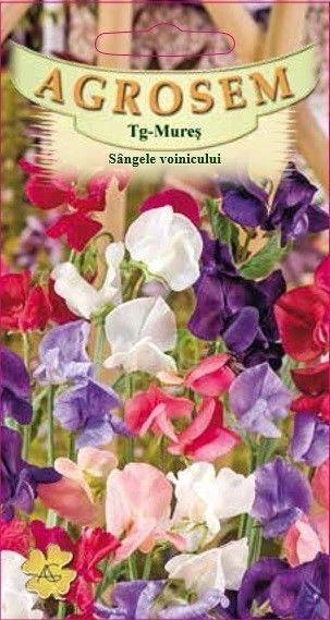 Seminte de Sangele voinicului mix - AS - Lathyrus odoratus