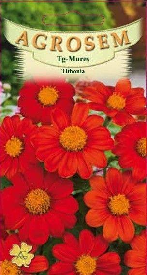 Seminte de Tithonia - AS - Tithonia rotundifolia