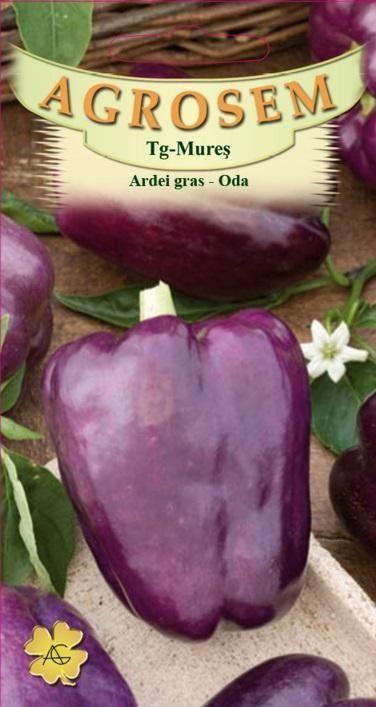 Seminte de Ardei gras Oda - AS - Capsicum annuum