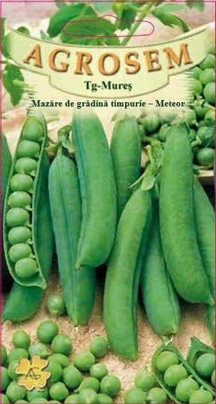 Seminte de Mazare de gradina timpurie Meteor - AS - Pisum sativum