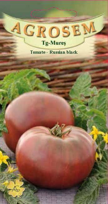 Seminte de Tomate Russian Black - AS - Lycopersicon esculentum