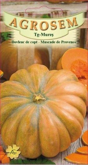 Seminte de Dovleac de copt Muscade de Provence - AS - Cucurbita maxima