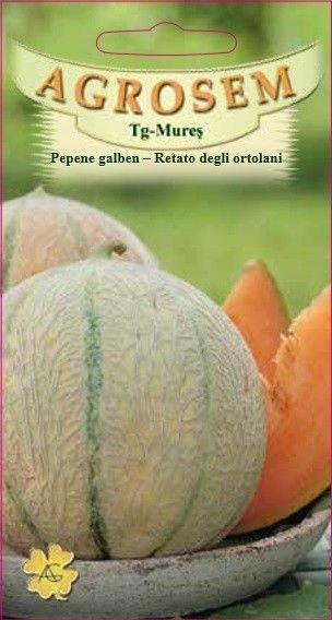 Seminte de Pepene galben Retato degli ortolani - AS - Cucumis melo