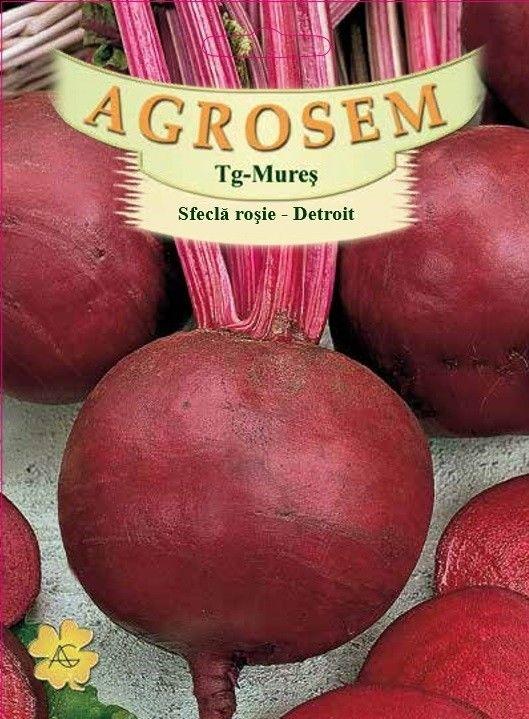 Seminte de Sfecla rosie Detroit - 100g - AS - Beta vulgaris var. conditiva