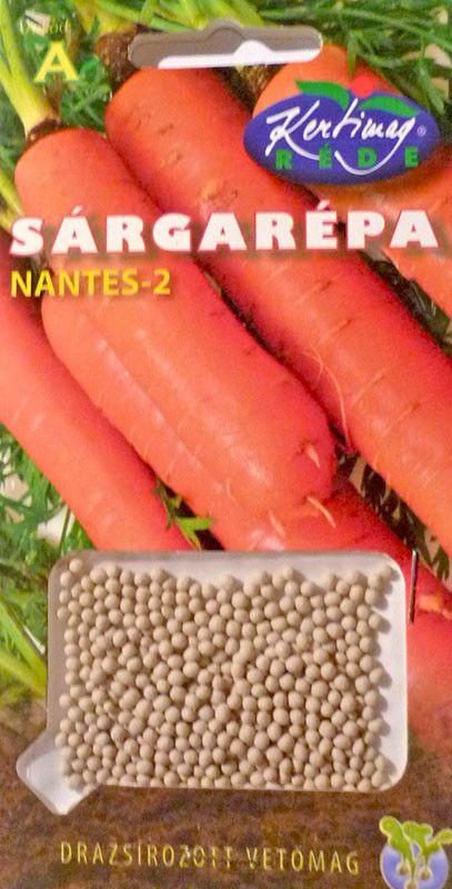 Seminte de Morcovi Nantes-2 - KM - drajerate