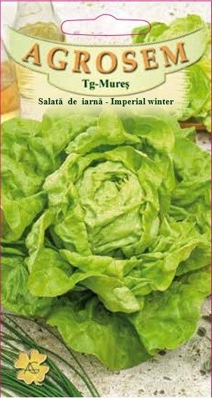 Seminte de Salata de iarna Imperial Winter - AS - Lactuca sativa