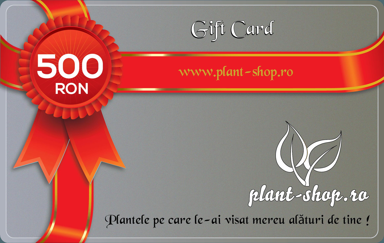Card cadou 500