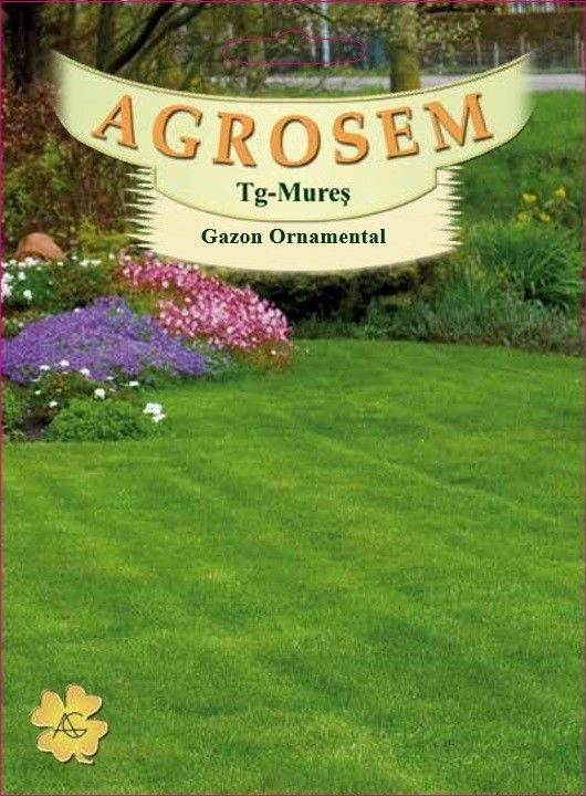 Seminte de Gazon ornamental mixtura 500g - AS