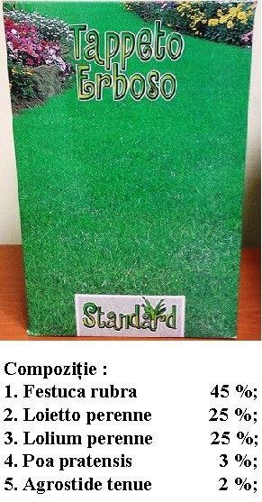 Seminte de Gazon ornamental Standard 1kg - AS