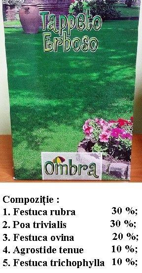 Seminte de Gazon ornamental Umbra 1kg - AS