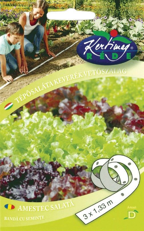 Seminte de Salata de frunze - KM - banda