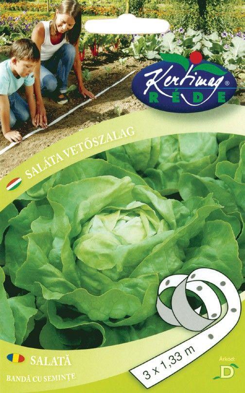 Seminte de Salata Lento - KM - banda